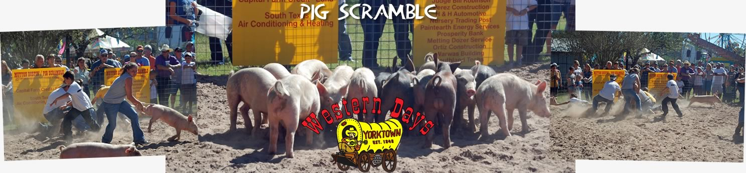 Pig Scramble at Western days
